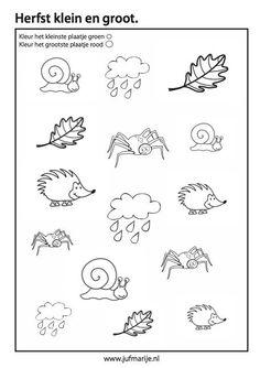 Werkblad - kleinste en grootste kleuren Autumn Activities For Kids, Fall Crafts For Kids, Toddler Crafts, Shapes Worksheets, Preschool Worksheets, Preschool Activities, Bujo Doodles, Autumn Theme, Painting For Kids