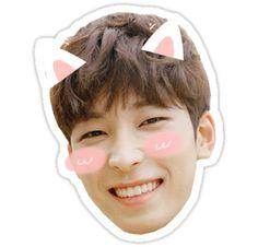 A cat eared Wonwoo