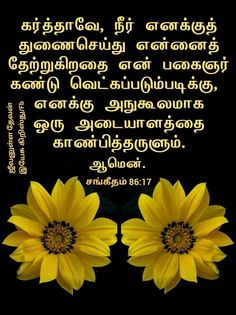 Bible Words, Bible Verses, Picture Quotes, Scripture Verses, Bible Scripture Quotes, Bible Scriptures, Scriptures