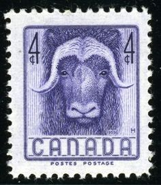 1955 4¢ purple musk ox. This paid the local (up to one ounce) and postcard rate. Designed by the great Emanuel Otto Hahn as part of the Wildlife series begun in 1952.
