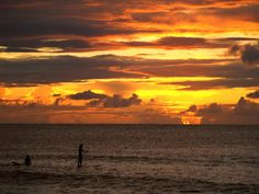 Paddle board at sunset on O'ahu. Download for FREE on freephotodb.