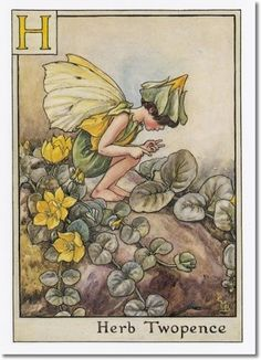 Cicely Mary Barker - A Flower Fairy Alphabet - The Herb Twopence Fairy Archival Fine Art Paper Print
