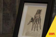 Illustrazione anatomica mano fine '800 con cornice di GRANPAstudio
