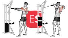 Όρθιες έλξεις ώμων στην τροχαλία με σχοινί Health Fitness, Fitness, Health And Fitness, Gymnastics