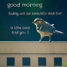 write name on good morning quote birds picture. today will be beautiful and fun quote name picture. birds good morning quote name. print name little birds good morning wishes quote greeting cards Happy Good Morning Images, Good Morning Wishes Quotes, Good Morning Today, Latest Good Morning Images, Good Morning Images Download, Good Morning Picture, Morning Greetings Quotes, Morning Pictures, Morning Prayers