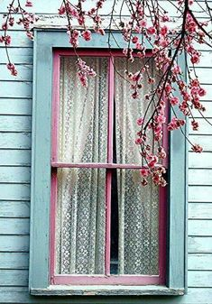 Blue & pink window