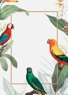 Art And Illustration, Free Illustrations, Dark Green Background, Tropical Background, Tropical Birds, Tropical Paradise, Tropical Design, Flower Backgrounds, Wallpaper Backgrounds