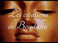 YouTube les plus belles citations du Buddha