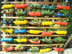 PARETE DI BOTTIGLIE CON FIORI PER GIARDINO FAI DA TE   Idee giardino fai da te - Creative DIY garden ideas recycling
