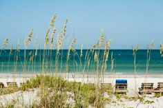 St Petersburg / Clearwater Florida