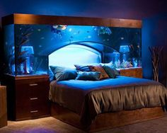Funny pictures about The Aquarium Bed. Oh, and cool pics about The Aquarium Bed. Also, The Aquarium Bed photos. Home Aquarium, Aquarium Design, Aquarium Ideas, Aquarium Setup, Aquarium Decorations, Aquarium Stand, Nature Aquarium, Room Decorations, Awesome Bedrooms