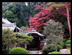 黒谷さん 金戒光明寺 Kyoto, Cabin, House Styles, Home Decor, Decoration Home, Room Decor, Cabins, Cottage, Home Interior Design