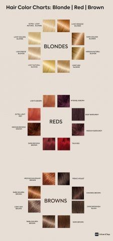How to Choose the Best Hair Colour from Hair Colour Charts hair color chart - Hair Color Hair Color For Brown Skin, Brown To Blonde, Hair Color For Black Hair, Cool Hair Color, Hair Color For Morena Skin, Indian Hair Color, Natural Hair Color Chart, Brown Hair For Indian Skin, Brown Hair Colour Chart