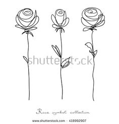 57 Ideas Flowers Sketch Background For 2019 Rose Line Art, Line Art Flowers, Flower Line Drawings, Line Flower, Flower Sketches, Flower Art, Line Drawing Tattoos, Line Tattoos, Flower Tattoos