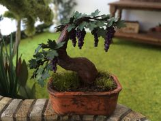 Plant Green miniature bonsai tree vine with grapes Dollhouse scale 1:12 by MadeInEven on Etsy https://www.etsy.com/listing/218186741/plant-green-miniature-bonsai-tree-vine
