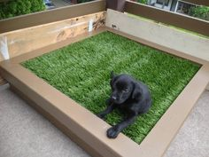 21 E-Z Pee-Z DIY Projects for Dog Lovers