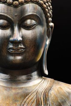 """""""According to the Buddha, the birth of a human being is not a beginning but a continuation, and when we're born, all the different kinds of seeds—seeds of goodness, of cruelty, of awakening—are already inside us. Whether the goodness or cruelty in us is revealed depends on what seeds we cultivate, our actions, and our way of life.""""   ~  Thich Nhat Hanh   <3 lis"""