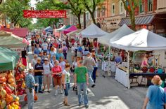 Every year Kennett has it's annual mushroom festival in downtown Kennett which offers rides & lots of art etc. making it a great event to attend!