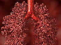 Akciğerler Temizleyici