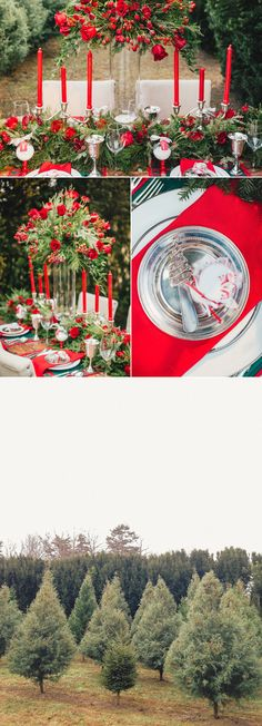 Christmas Tree Farm Wedding Inspiration - Knoxville TN | Tennessee ...