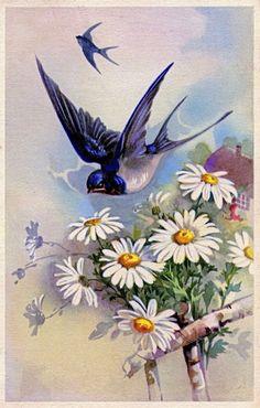 Vintage Artwork, Vintage Prints, Vintage Birds, Vintage Postcards, Paisley Art, Plaster Art, Bird Poster, Spring Painting, Happy Paintings