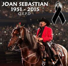Spanish music Spanish Music, Riding Helmets, Horses, Animals, Live, Fashion, Moda, Animaux, Fashion Styles