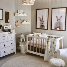 Goal Create A Clic Feminine Sweet Nursery Without The Use Of Pink Image By Picture Sharing About Bank And Finance Gaga Gallery Animal Themed