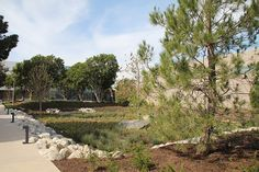 A park designed as rooms to showcase ecology, history, community health and wellbeing - Ishihara Park - Mia Lehrer & Associates #landscapearchitecture #park #trees #retention #water #SUDS #LID #lowimpactdesign