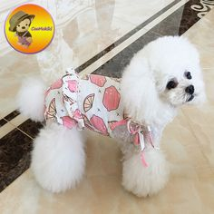 New arrivals dogs sexy bikini Season Pants pets nappy Puppy Underpants dog underwear Female Dog panty cup puppy clothing Pet Fashion, Puppy Clothes, Pet Products, Sexy Bikini, Pet Supplies, Underwear, Puppies, Dog, Female