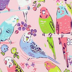 print & pattern - budgies…