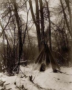 Here for your enjoyment is a highly creative photograph of an Indian Tipi in the Forest. It was created in 1908 by Edward S. Curtis.