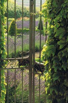 door to lavender