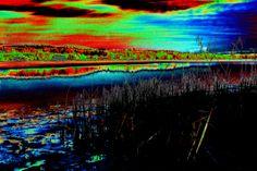 ©UGNeumann Met2014-049cb