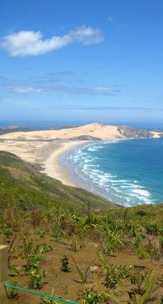 Cape Reinga , Northland- tip of New Zealand
