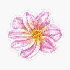 Pink Flamingos Birds, Food Stickers, Transparent Stickers, Glossier Stickers, Dahlia, Bullet, Backgrounds, Study, Brooch