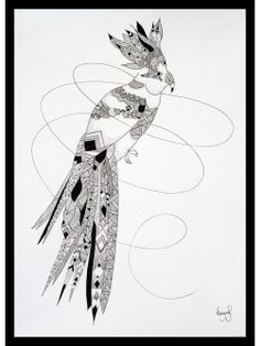 "Original illustration of a wild parrot - By Manyoly - Made with China ink   ""LIVE LEARN GROW ART ENTRY"" #elementedenartsearch"