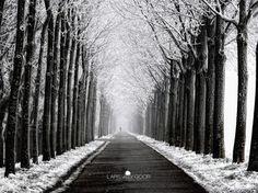 Incredible Photography by Lars van de Goor