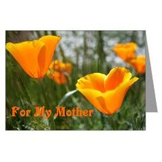 Mother's Day Poppies Greeting Card via Floral Dreams at CafePress