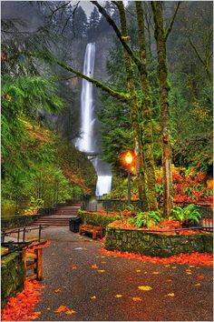 Autumn in Multnomah Falls, Oregon