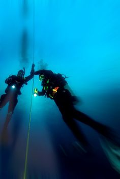 night-scuba-diving-padi