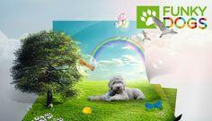 hondenspullen online