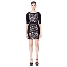 ⚡️SALE⚡️Zara W&B collection lace panel dress Black dress with lace and floral panels on the front Zara Dresses