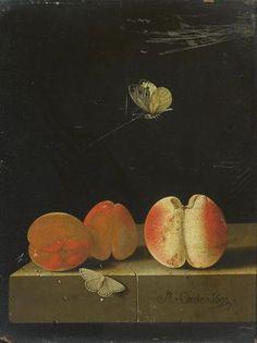 Adrien Coorte p.jpg (337×450)