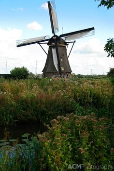 Traditional Dutch windmill i would love to live in a old windmill Tilting At Windmills, Old Windmills, Netherlands Windmills, Dutch Windmill, Places In Europe, Le Moulin, Middle Ages, Amazing Nature, Denmark