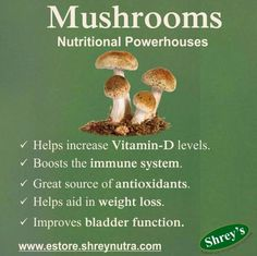 Mushrooms have long been celebrated as powerful vegetables providing many a health benefit. It is packed with essential nutrients such as Selenium, Vitamin D, Potassium and Niacin. Add mushrooms to your diet and enjoy the many positive impacts it has on your health. For more on great health, please visit estore.shreynutra.com