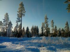 Suomen talvi, sininen ja valkoinen Snow, Mountains, Nature, Travel, Outdoor, Outdoors, Naturaleza, Trips, Viajes