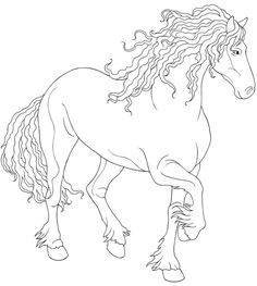 Welcome to Dover Publications / Creative Haven Horses Draw and Color / Artwork by Marty Noble