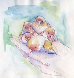 illustration of Adara Sanchez 7 Photography Illustration, Illustration Sketches, Graphic Illustration, Art Photography, Animal Sketches, Animal Drawings, Art Drawings, Adara Sanchez Anguiano, Nature Sketch