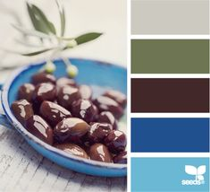 Olive Hues: Putty Gray, Olive Green, Kalamata Olive Brown, Bright Grecian Blue and Pool Blue