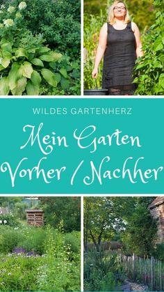 Vegetable Garden Design, Garden Landscape Design, Kew Gardens, Small Gardens, Gardening For Beginners, Gardening Tips, Brick Patterns Patio, Hydrangea Care, Olive Garden